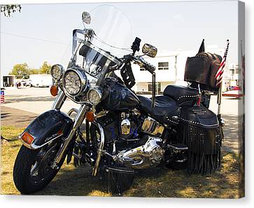 Harley Classic Canvas Print by Elizabeth Chevalier