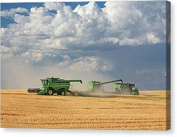 Harvest Clouds Canvas Print by Todd Klassy