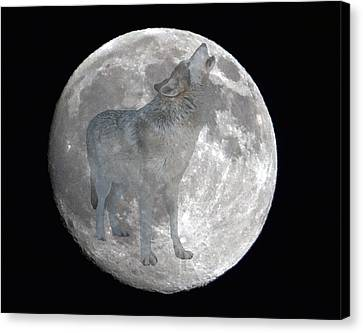Howl At The Moon Canvas Print