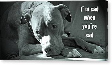 I'm Sad When You're Sad Canvas Print by Gwyn Newcombe