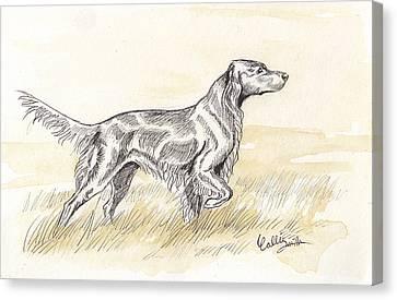 Irish Setter Sketch Canvas Print