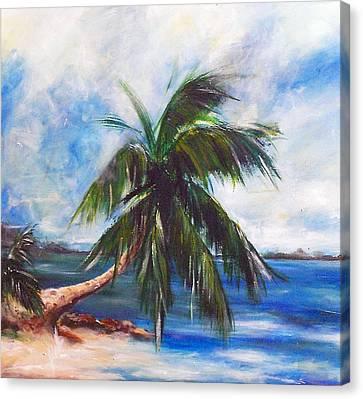 Island Iv Canvas Print by Amy Williams