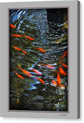 Canvas Print featuring the photograph Koi Swirl by Linda Olsen