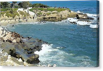 La Jolla Art Canvas Print - La Jolla Cove - Early Morning Swim by Russ Harris