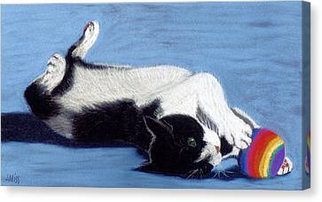 Canvas Print featuring the pastel Louie's Hack N Sack by Jan Amiss