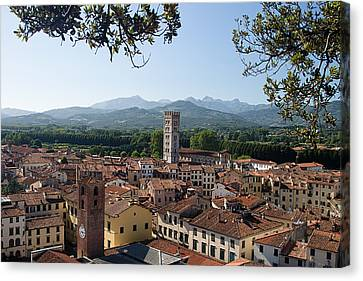 Tuscan Canvas Print - Lucca Tuscany by Mathew Lodge