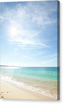 Maui Beach Canvas Print by Monica and Michael Sweet