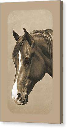 Horse Lover Canvas Print - Morgan Horse Phone Case In Sepia by Crista Forest