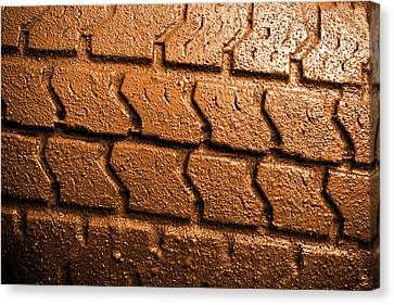 Muddy Tire Canvas Print by Carlos Caetano