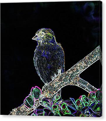Neon Goldfinch Canvas Print by Betty LaRue