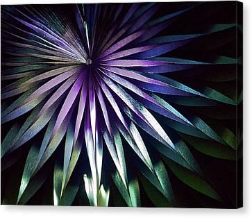 Night Bloom Canvas Print by Photo ephemera