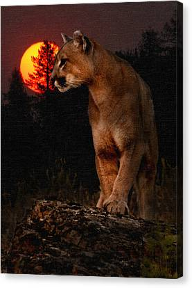 Night Of The Cougar Canvas Print by Wade Aiken