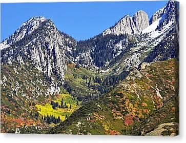 October Autumn  Canvas Print
