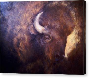 Old Bison Canvas Print by Joann Shular