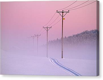 Old Powerlines Canvas Print by www.WM ArtPhoto.se