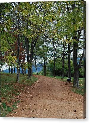 Canvas Print featuring the photograph Pathway by Eric Liller