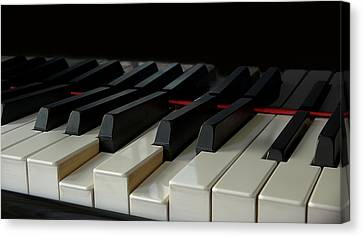 Piano Keyboard Canvas Print by Martin Zalba is a photographer looking for a personal look,