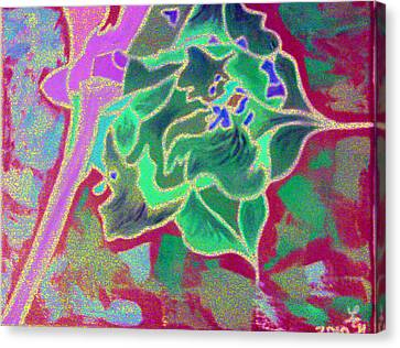 Pomegranate Flower Canvas Print
