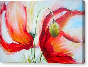 Poppies. Canvas Print by Jacqueline Klein Breteler