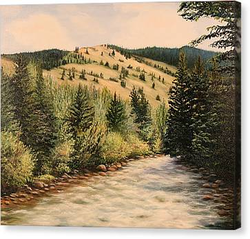 Rock Creek Canvas Print by Patti Gordon