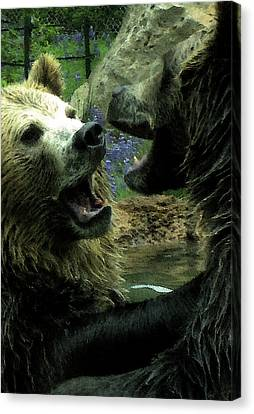 Canvas Print featuring the digital art Silly Bears by Holly Ethan