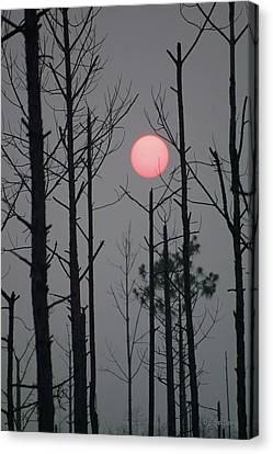 Smokey Sunset Canvas Print