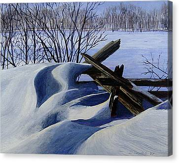 Snow Sculpture Canvas Print by Doug Goodale