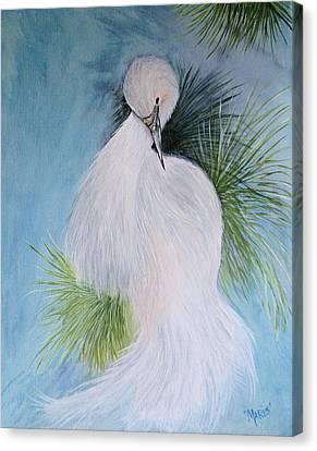 Snowy Egret Canvas Print by Maris Sherwood