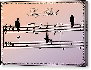 Songbirds With Border Canvas Print by Bill Cannon
