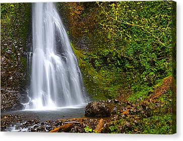 Spring Cascade Canvas Print by Andrea Hazel Ihlefeld