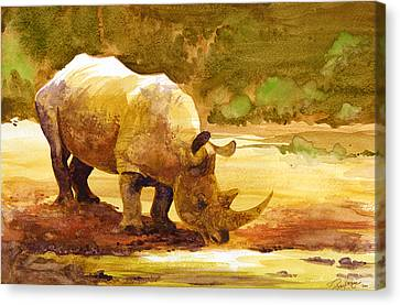 Sunset Rhino Canvas Print by Brian Kesinger