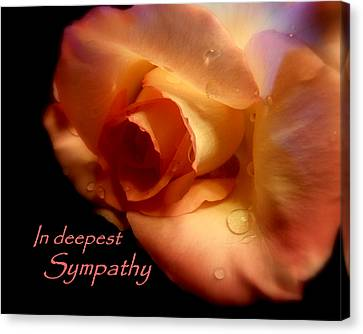 Sympathy Rose Canvas Print