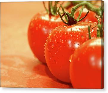 The 3 Tomatoes Canvas Print by Mark Delfs
