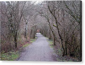 Trail Tunnel Canvas Print by J D Banks