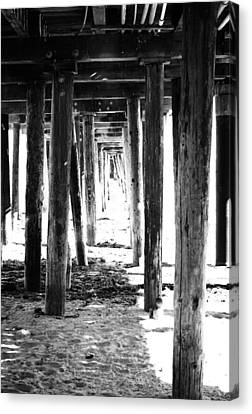 Seaweed Canvas Print - Under The Pier by Linda Woods