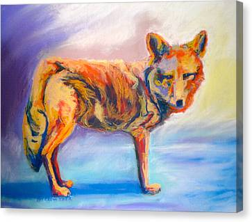 Canvas Print featuring the pastel Watching Coyote by Pat Crowther