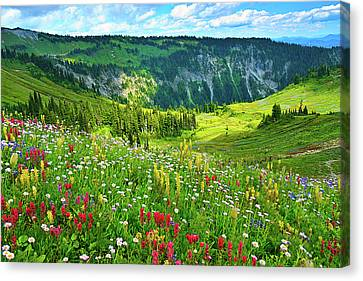 Lush Colors Canvas Print - Wild Flowers Blooming On Mount Rainier by Feng Wei Photography