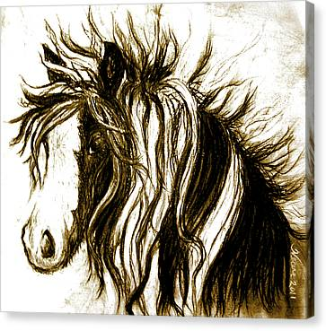 Gypsy Canvas Print - Wind Horse Version Six by Teresa Vecere