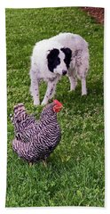 Border Collie Herding Chicken Hand Towel