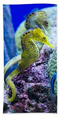 Colorful Seahorses Hand Towel by Jim And Emily Bush