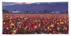 Field Of Tulips And Mount Baker Hand Towel