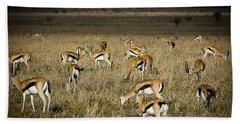 Herd Of Antelope Hand Towel by Darcy Michaelchuk