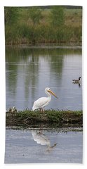 Hand Towel featuring the photograph Pelican Reflection by Alyce Taylor
