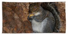 Hand Towel featuring the photograph Squirrell by Pedro Cardona