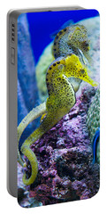 Colorful Seahorses Portable Battery Charger by Jim And Emily Bush