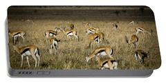 Herd Of Antelope Portable Battery Charger by Darcy Michaelchuk