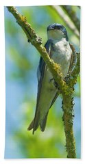 Beach Towel featuring the photograph Bird In Tree by Rod Wiens