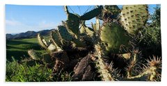 Beach Sheet featuring the photograph Cactus In The Mountains by Matt Harang