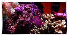 Colors Of Underwater Life Beach Towel