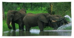 Elephant Shower Beach Towel